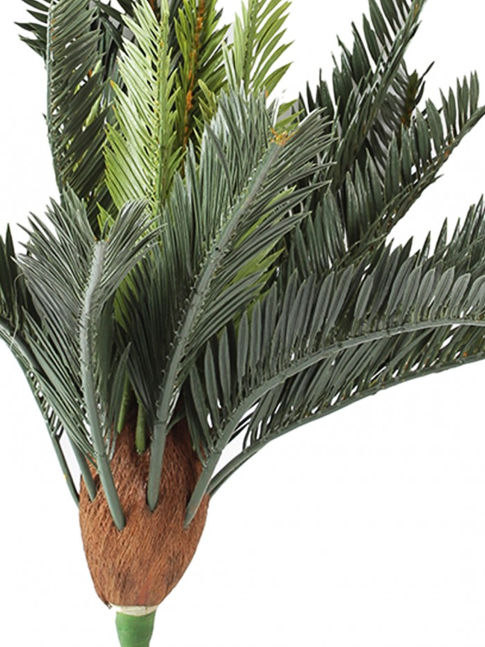 Buy Beautiful Artificial Cycus Plant With Long Leaves For Home And Office Décor (42 Cm Tall, Green)