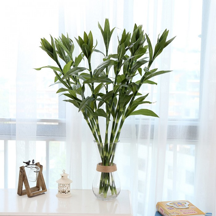 Buy 95 Cm Tall Artificial Lucky Bamboo (Set Of 3, Green) Online