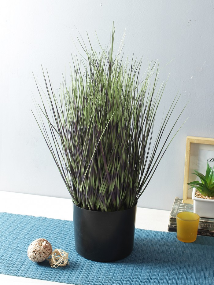 Buy Artificial Dogtail Grass Plants In A Melamine Pots (50 Cm Tall, Dark/Green) Online