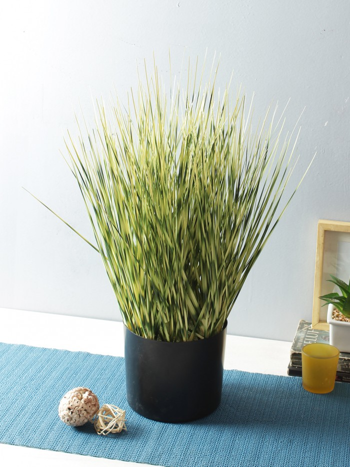 Buy Artificial Dogtail Grass Plants In A Melamine Pots (50 Cm Tall, Green) Online