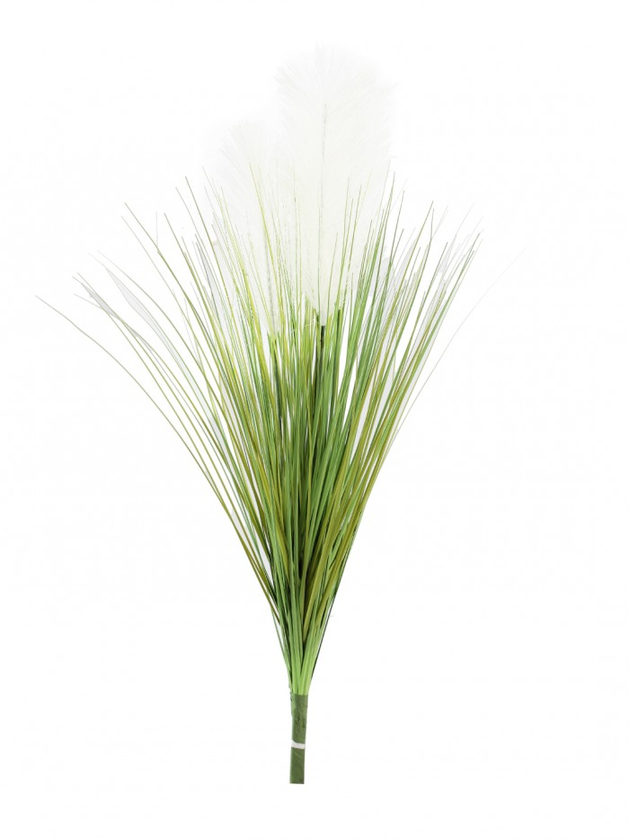 Buy Artificial Dogtail Grass Plants Without Pot (75 Cm Tall, Green/White) Online