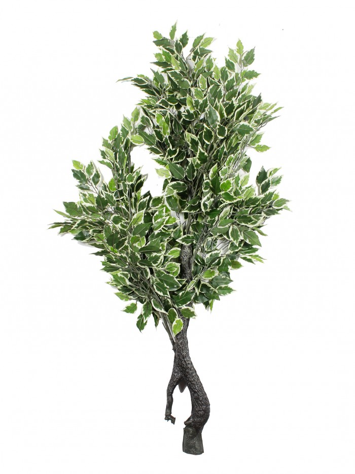 Buy Polyester And Polyurethane Artificial Ficus Floor Plant Without Pot (20 Cm X 20 Cm X 120 Cm Tall