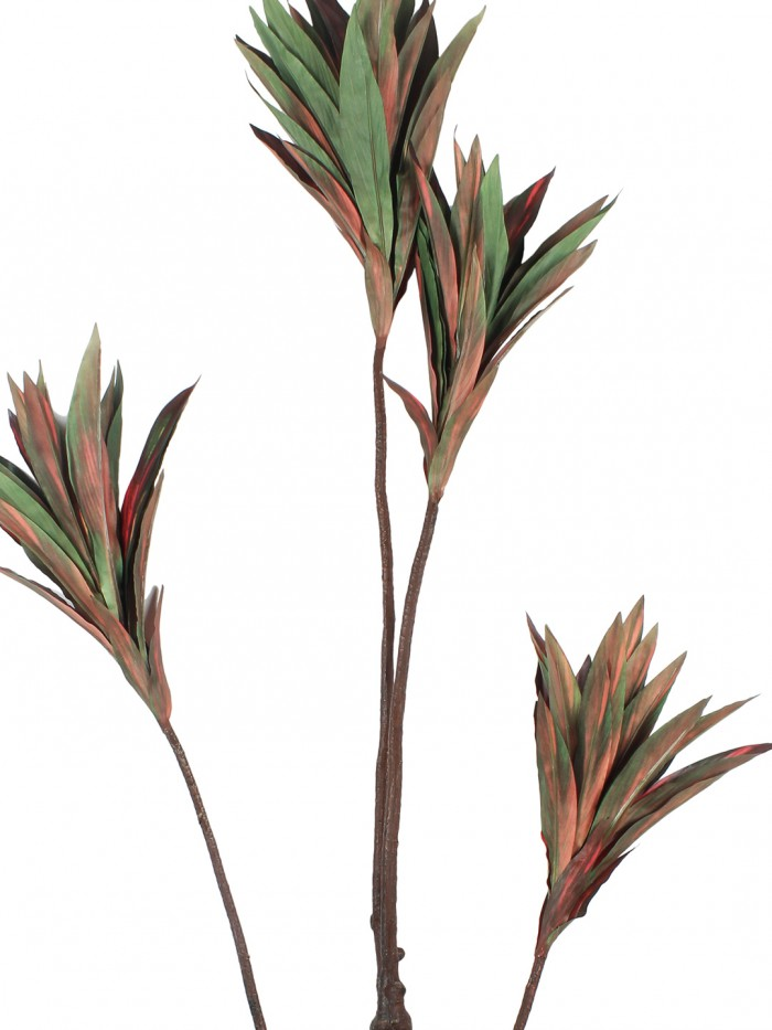 Buy Artificial Cordyline Floor Plant Without Pot (162 Cm Tall, 4 Branches, Red/Green) Online