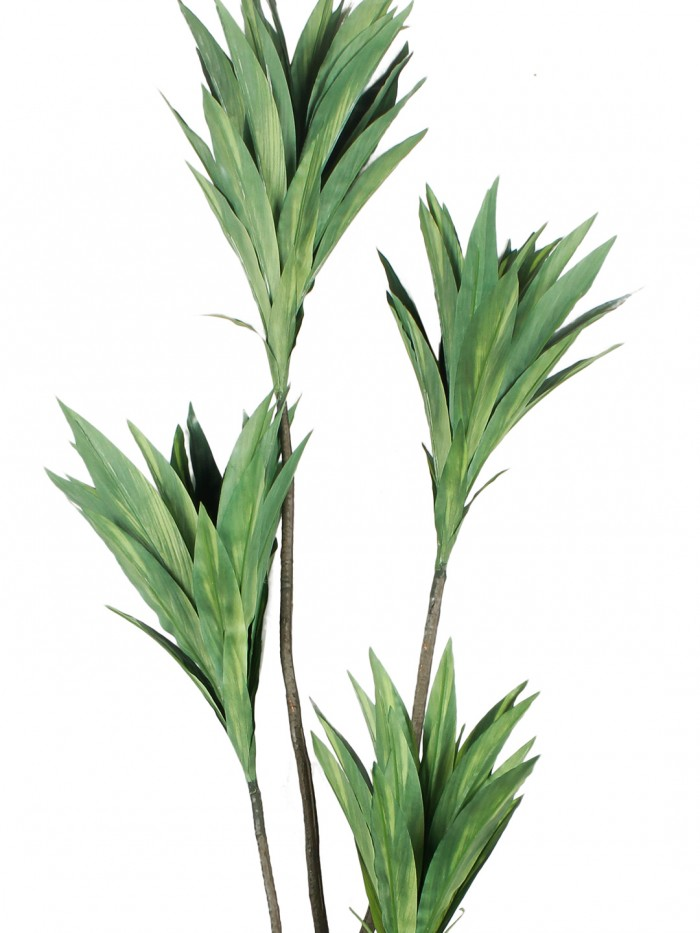 Buy Artificial Cordyline Floor Plant Without Pot (162 Cm Tall, 4 Branches, Green) Online