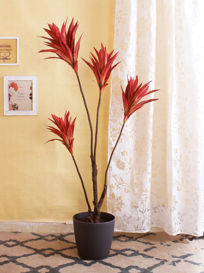 Buy Artificial Cordyline Floor Plant Without Pot (162 Cm Tall, 4 Branches, Red) Online