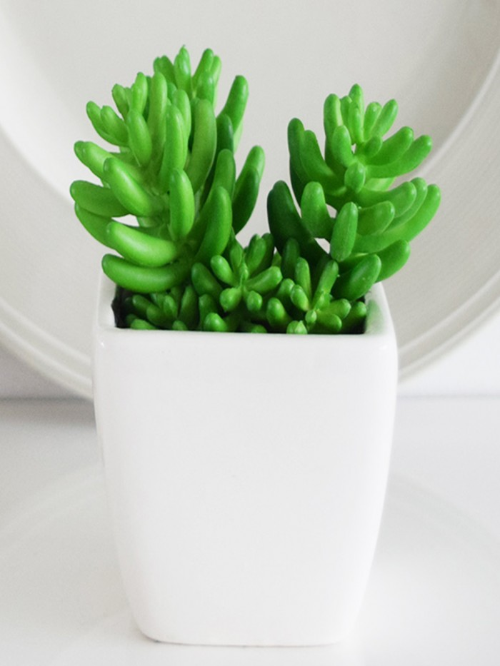 Buy Fourwalls Artificial Succulent Plant In A Ceramic Pot (5 Inches Tall, Multicolor) Online