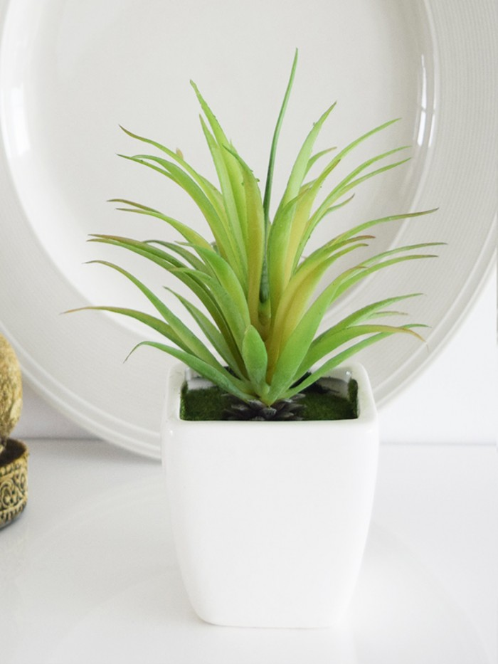 Buy Fourwalls Artificial Succulent Plant In A Ceramic Pot (7 Inches Tall, Multicolor) Online