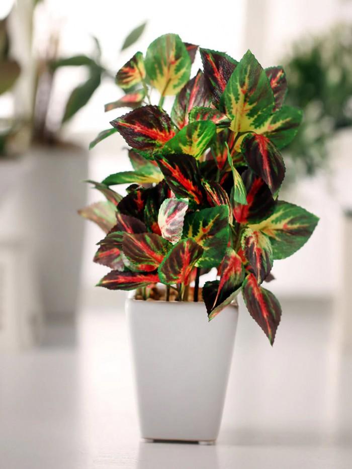 Buy Fourwalls Premium Range Artificial Camelia Plant With Stylish Ceramic Vase (White) Online