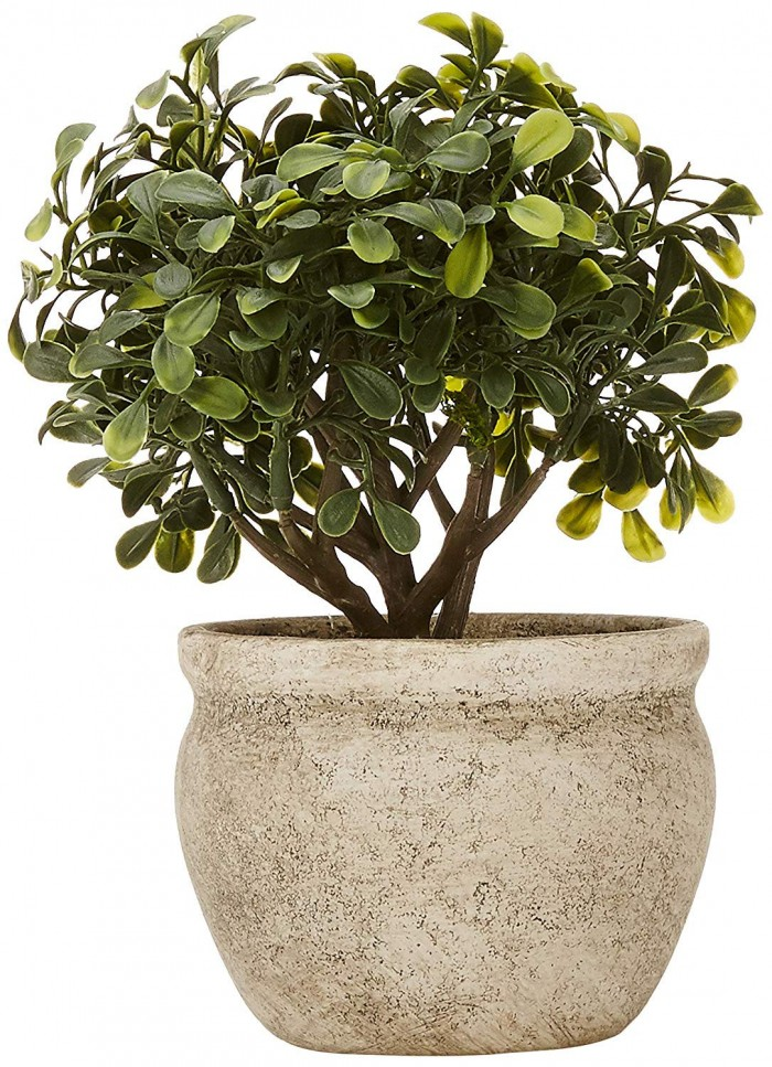 Buy Artificial Topiary Bonsai Plants In A Ceramic Vase For Home D�cor (22 Cm Tall, Green) Online
