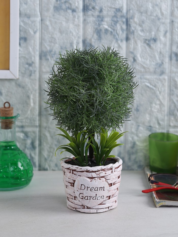 Buy Soft Touch Artificial Topiary Plant In A Ceramic Vase (15 Cm X 20 Cm X 24 Cm, Dark Green) Online
