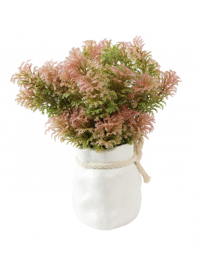 Buy Soft Touch Artificial Plant In A Ceramic Vase (20 Cm Tall, Red Green) Online
