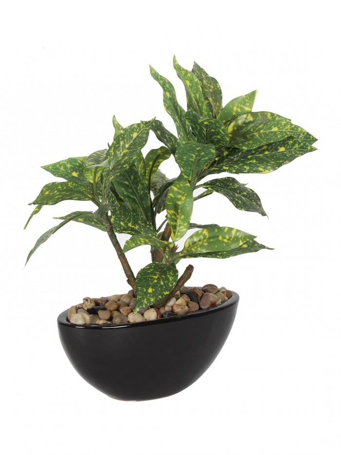 Buy Artificial Natural Looking Codiacum Bonsai Plant In A Ceramic Pot For Home Office Decor (29 Cm T