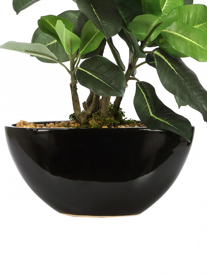 Buy Fourwalls Artificial 24 Cm Tall, Natural Looking Dracaena Bonsai Plant In A Ceramic Vase For Hom