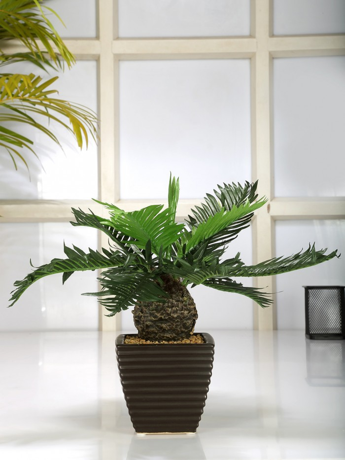 Buy Artificial Bamboo Bonsai Plant In A Ceramic Vase For Home D�cor (199 Leaves, 38 Cm Tall, Green