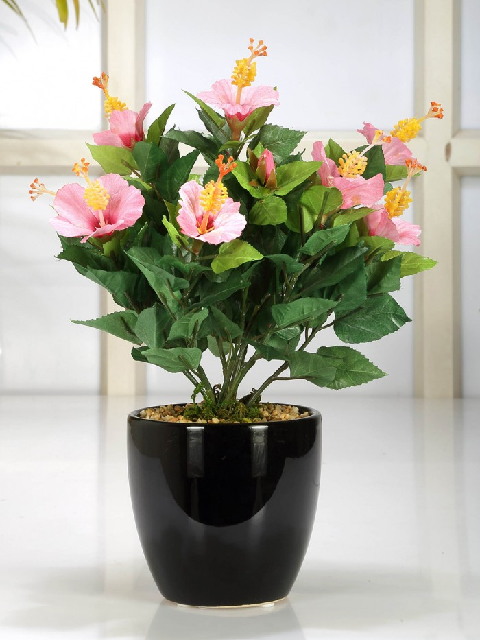 Buy Artificial Habiscus Flower Bonsai Plant In A Ceramic Vase For Home D�cor (153 Leaves, And 9 Fl
