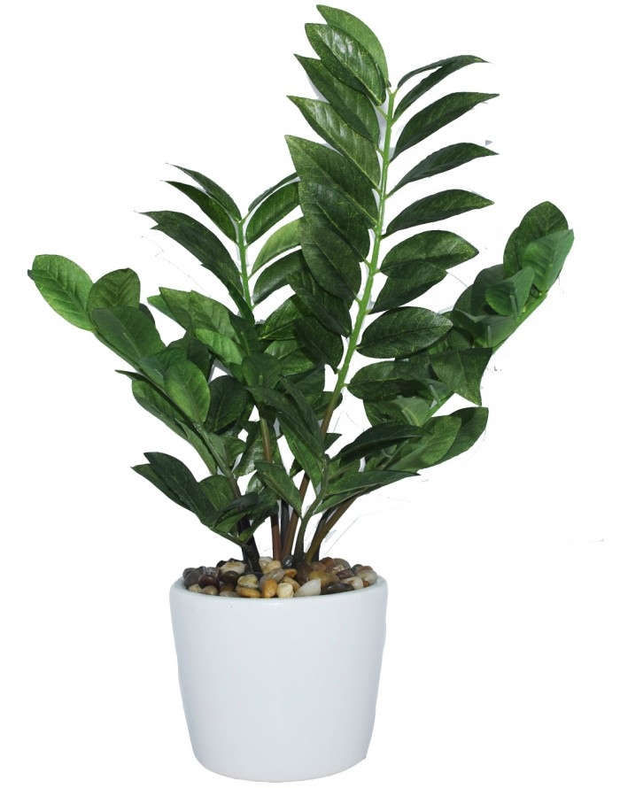 Buy Artificial Araceae Bonsia Plant In A Glossy Ceramic Pot (39 Cm, Green) Online