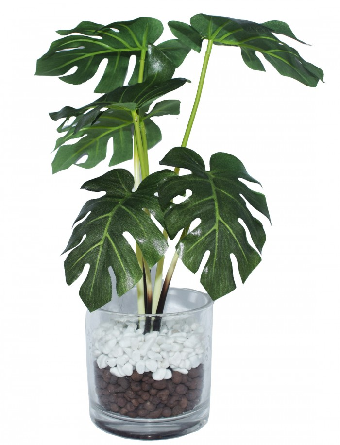 Buy Artificial Philodendron Plant In A Glass Vase For Home D�cor (34 Cm, Green) Online