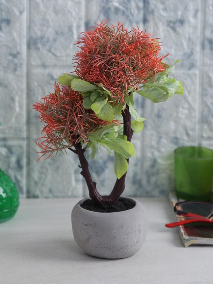 Buy Four Walls Soft Touch Artificial Plant In A Ceramic Pot (15 Cm X 20 Cm X 26 Cm, REd) Online