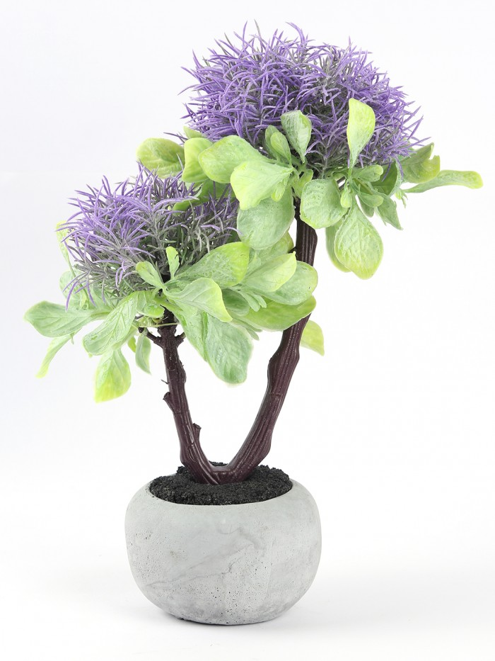Buy Premium Range Mini Artificial Wandering Plant With Stylish Ceramic Vase (ABT19CMWANDERING/72LVS/