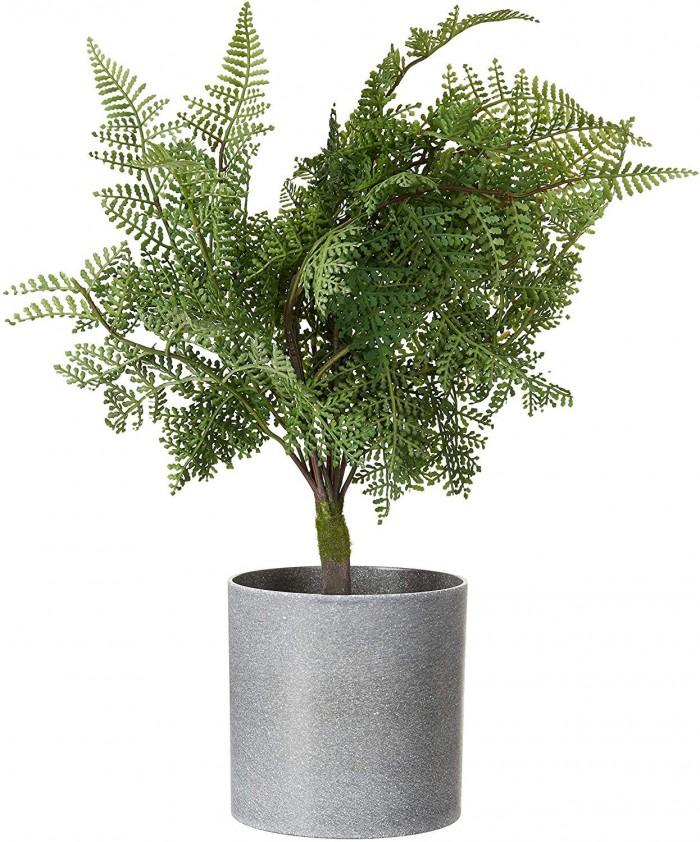 Buy Artificial Real Touch Fern Bonsai Potted Plant (35 Cm, Green) Online