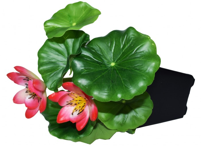 Buy Artificial Real Touch Lotus Flowers In A Plastic Pot For Tabletop D�cor (20 Cm, Pink) Online