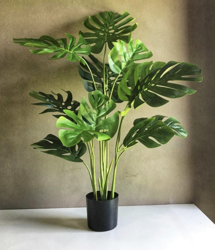 Buy Artificial Monstera Plant With Pot (4 Feet, Real Touch) Online