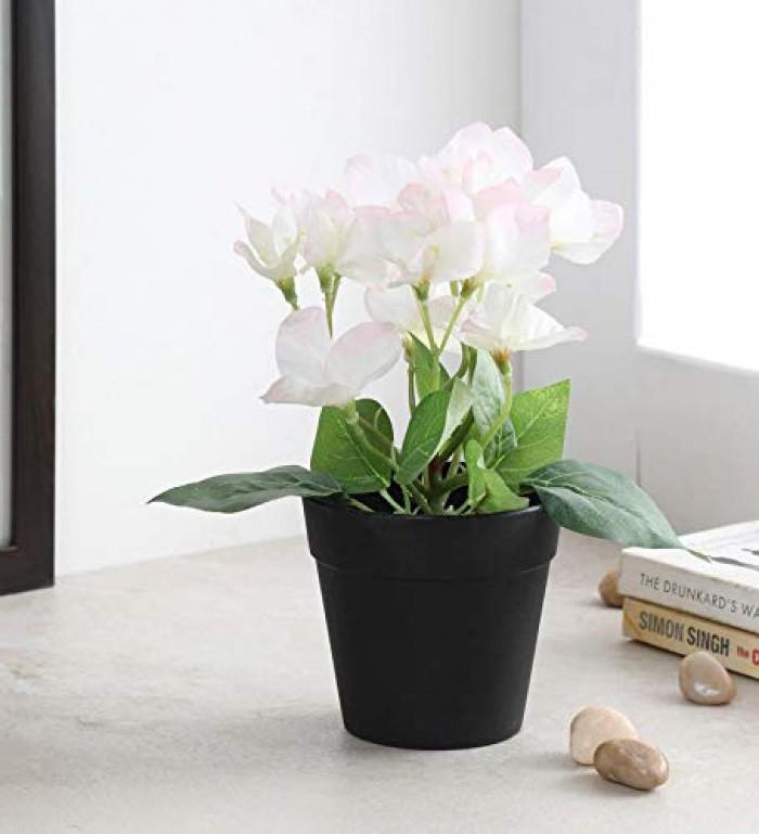 Buy Artificial Bougainvillea Flowers in a Plastic Pot (8\\\\\\\