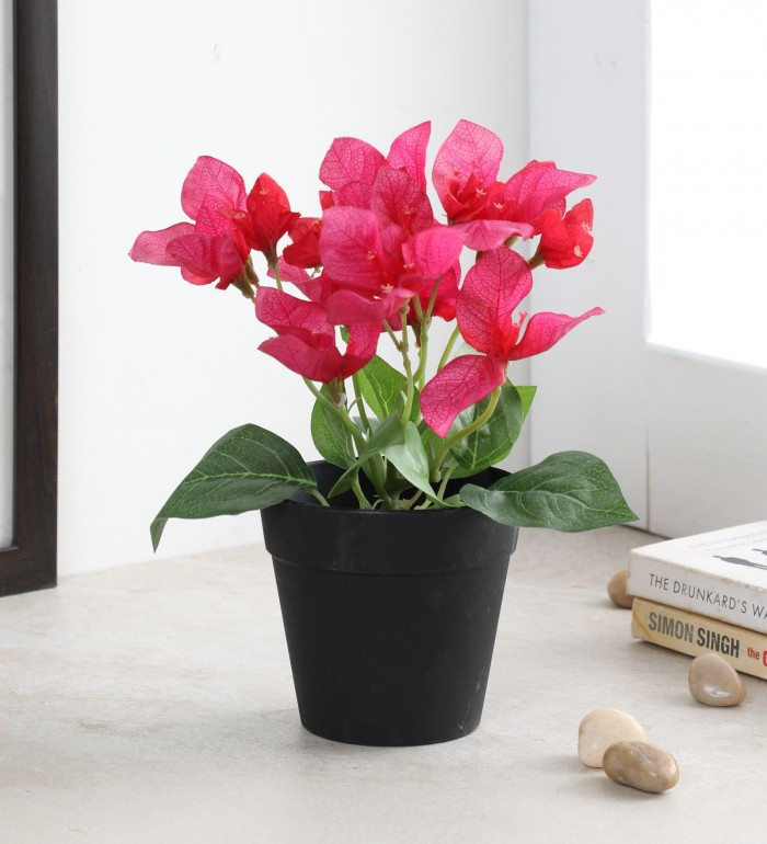 Buy Artificial Bougainvillea Flowers in a Plastic Pot (8\