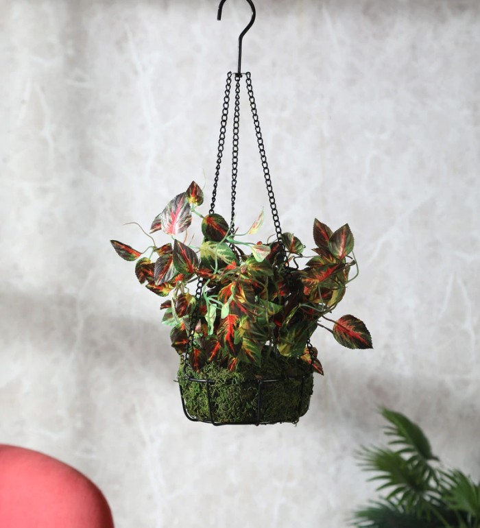 Buy Fourwalls English Coleus Artificial Plant In Hanging Ironware Basket (16 Inches, Multicolor) Onl