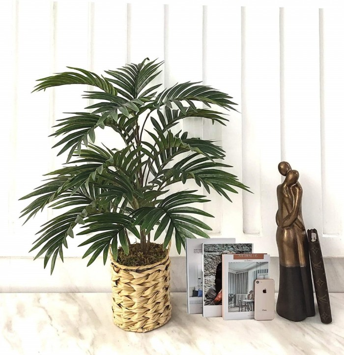 Buy Artificial Areca Plant With 21 Leaves Without Pot (Green, 75 Cm Tall) Online