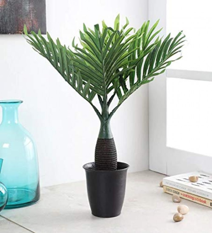 Buy Synthetic Artificial Bonsai Bottle Palm Plant Without Pot (10 Branches, Green, 40 Cm Tall) Onlin
