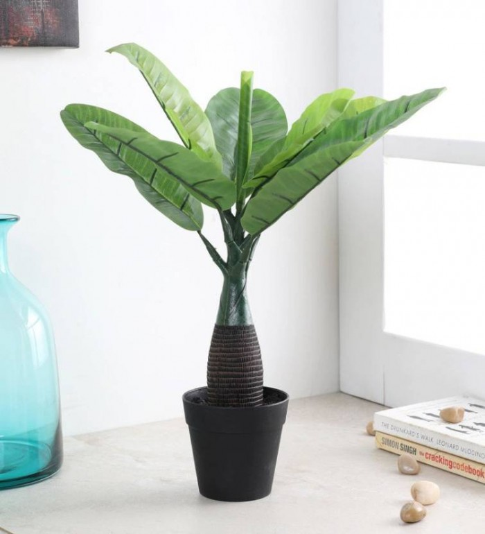 Buy Synthetic Artificial Bonsai Banana Palm Plant Without Pot (10 Branches, Green, 40 Cm Tall) Onlin