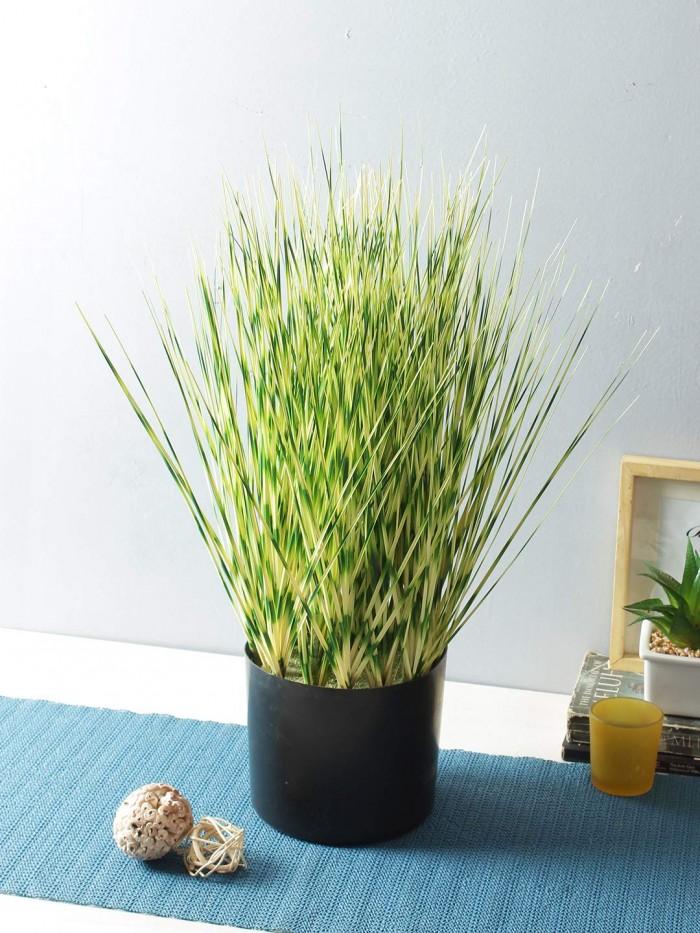Buy Artificial Dogtail Grass Plants In A Melamine Pots (50 Cm Tall, Light/Green) Online
