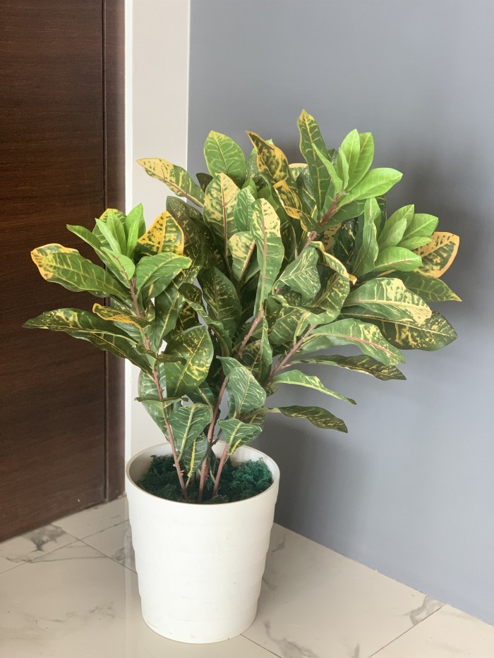 Buy Artificial Croton Plant Without Pot (82 cm, Yellow/Green)