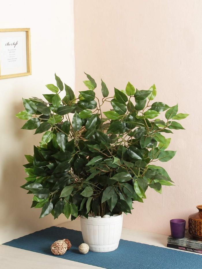 Buy Artificial Ficus Plant Leaves : 4 Stems
