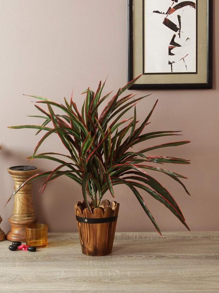Buy Artificial Dracaena Bush Plant (60 cm, Red)