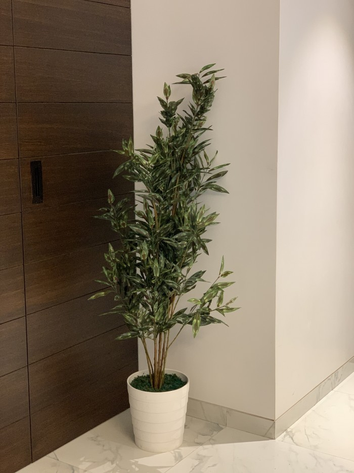Buy Artificial Calathea Floor Plant Without Pot (150 Cm Tall, Multicolor, 10 Branches) Online