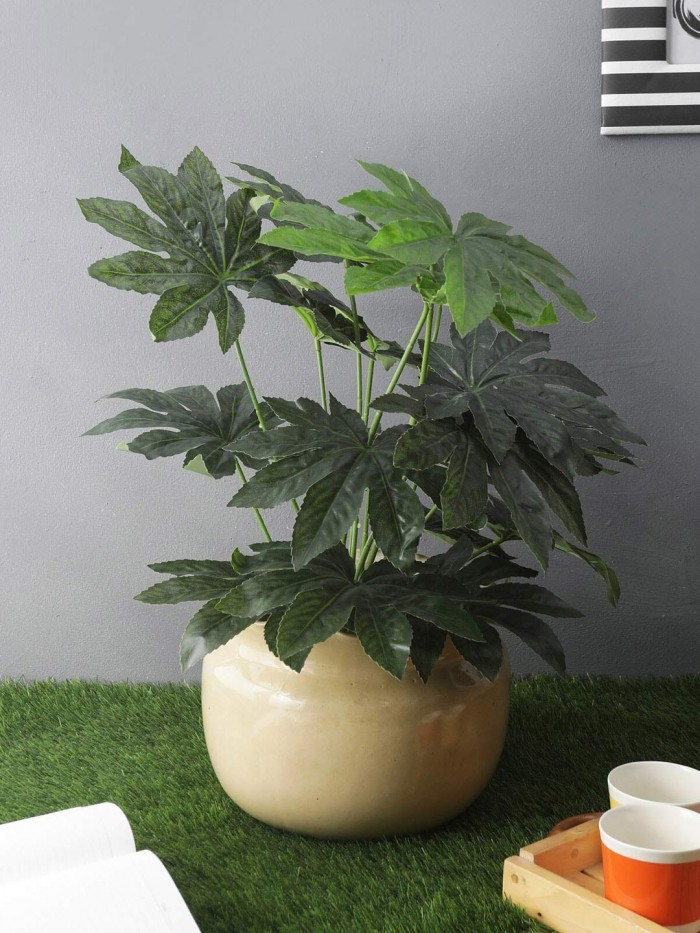 Buy Fourwalls Beautiful Artificial Miniature PVC Silk Floor Plant With Big Leaves And Without Pot (1