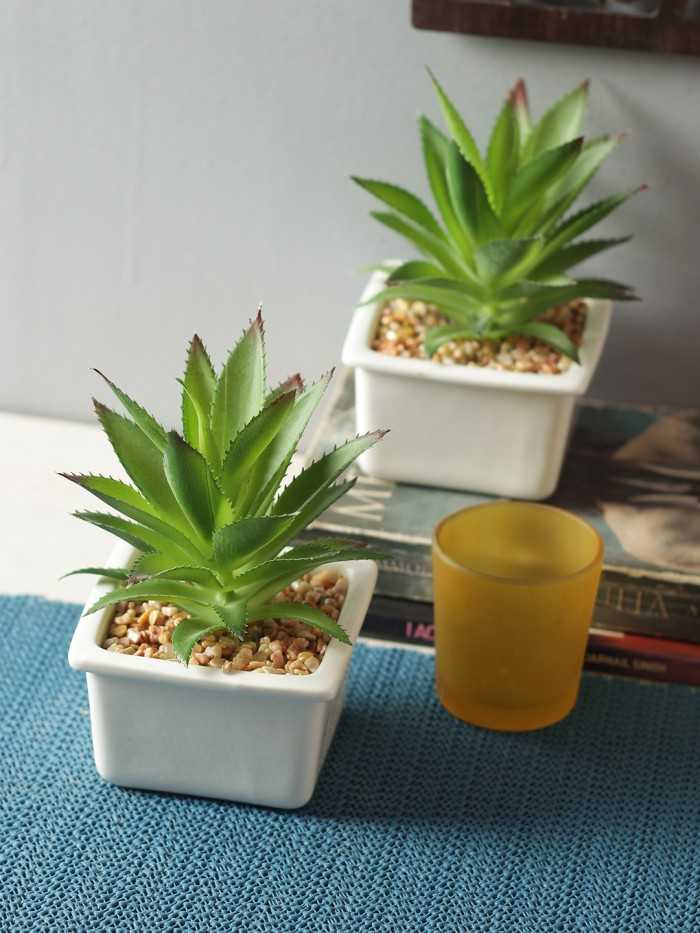 Buy Artificial Succulent With A Ceramic Vase And Tripod Holder Online