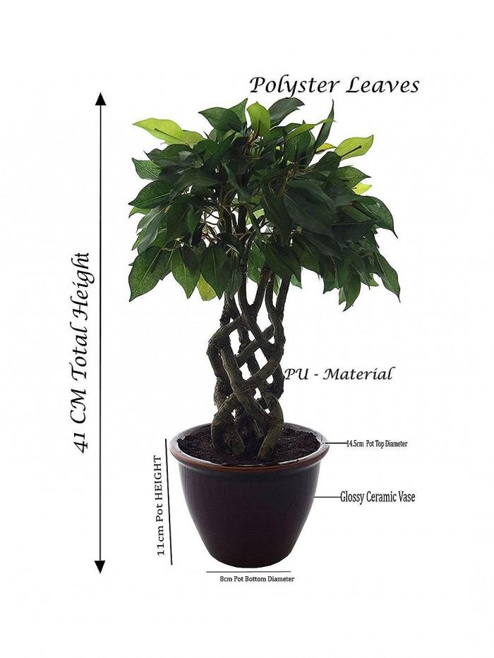 Buy Artificial Ficus Bonsai Plant in a Ceramic Vase for Home Decor (16